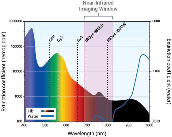 NIR imaging window graph