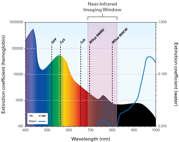 near-infrared imaging window graph