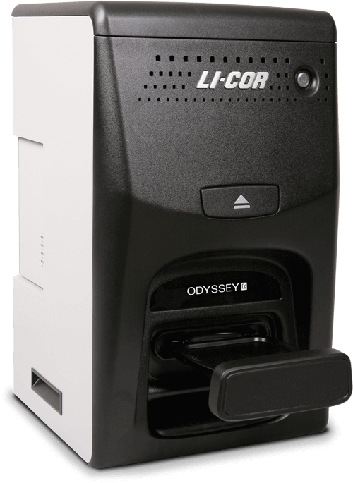 Odyssey Fc Dual-Mode Imaging System for Western Blots and