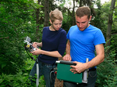photosynthesis research in a forest