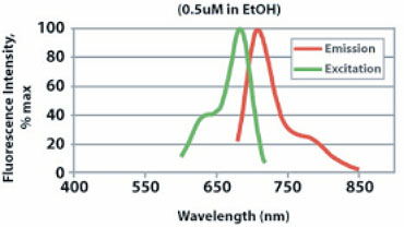CellVue Burgundy Excitation and Emission Spectra